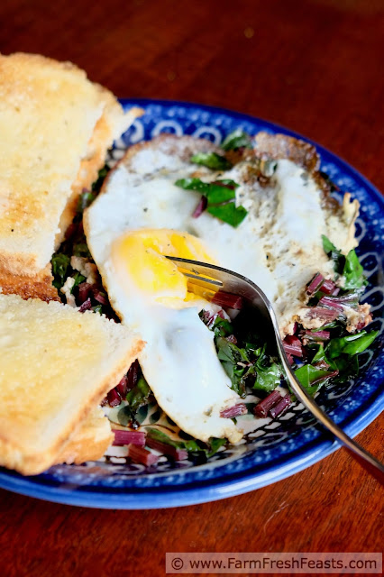 a breakfast plate of sautéed beet greens topped with a fried egg and toast