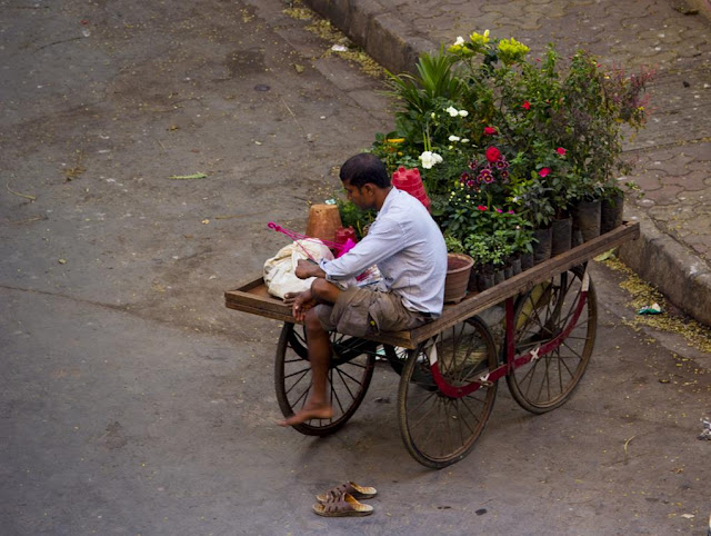 our world tuesday, handcart, potted plants, street, bandra east, entrepreneur, mumbai, india,