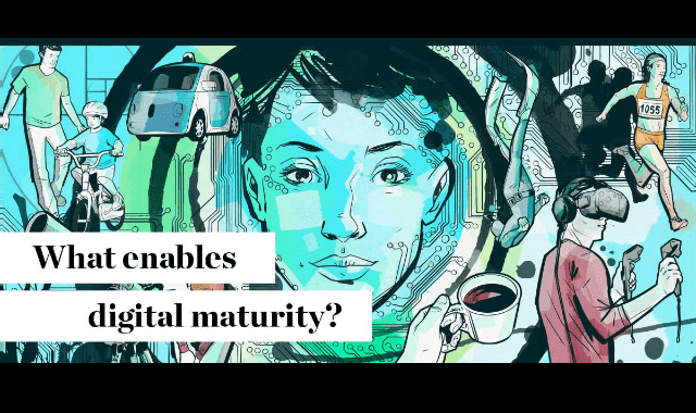 What Enables Digital Maturity?