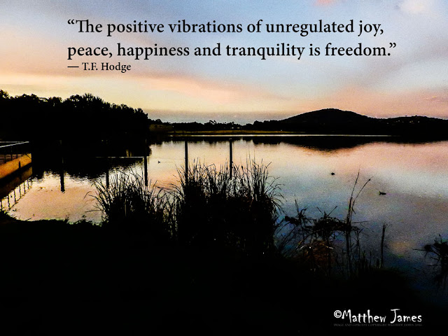 """The positive vibrations of unregulated joy, peace, happiness and tranquility is freedom."" ― T.F. Hodge"