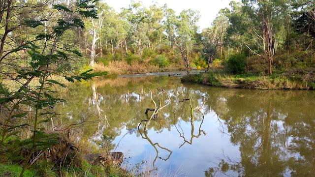 Yarra River Templestowe