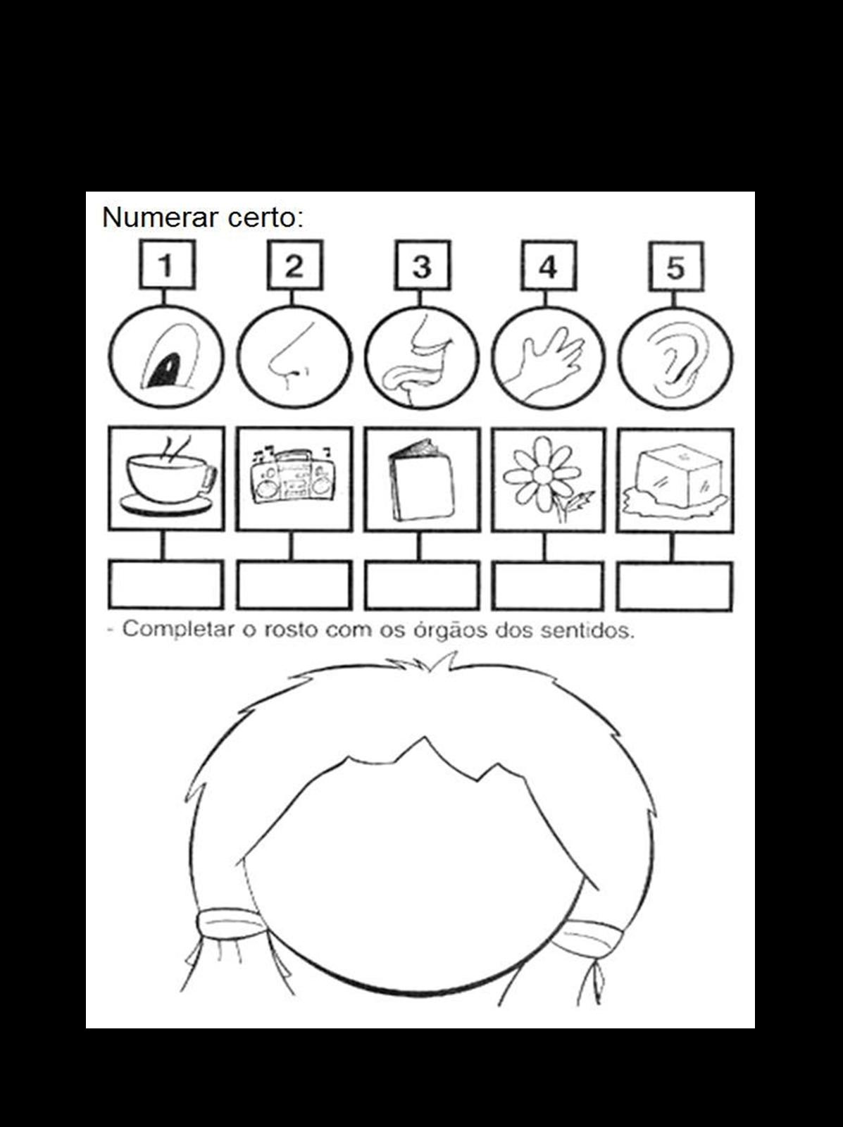 Plano de aula para o infantil