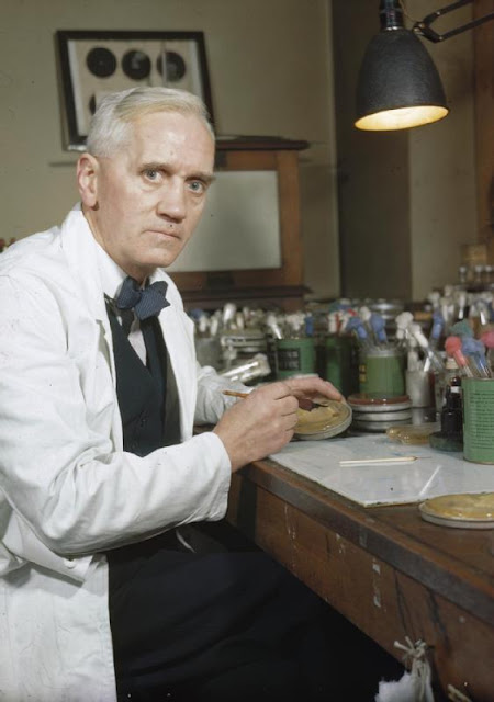 alexander fleming inventions,  who discovered antibiotics, discovered antibiotics,   how were antibiotics discovered,antibiotics invention history
