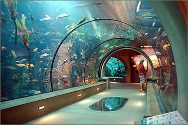 Aquario Long Beach The Best Beaches In World