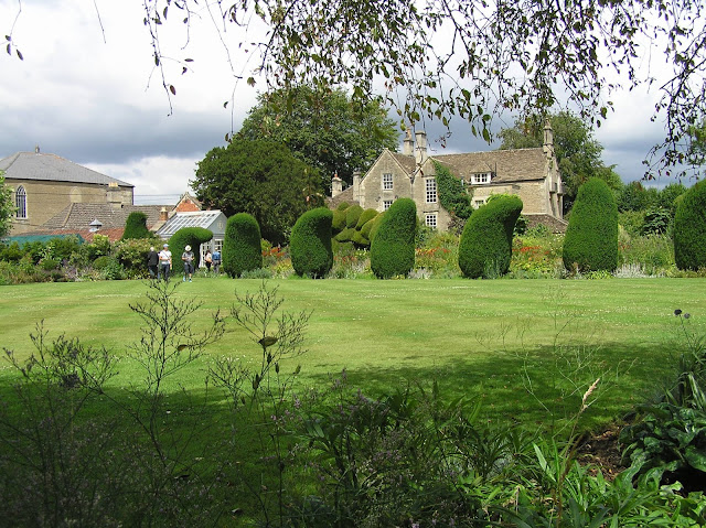 topiary z cisa, ogród angielski