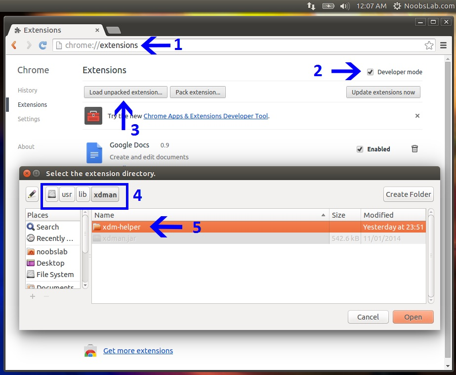 Chrome web store flash video downloader