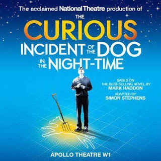 essay questions for the curious incident of the dog in the nighttime