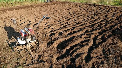 年代物のF210耕うん機と新たな耕作地