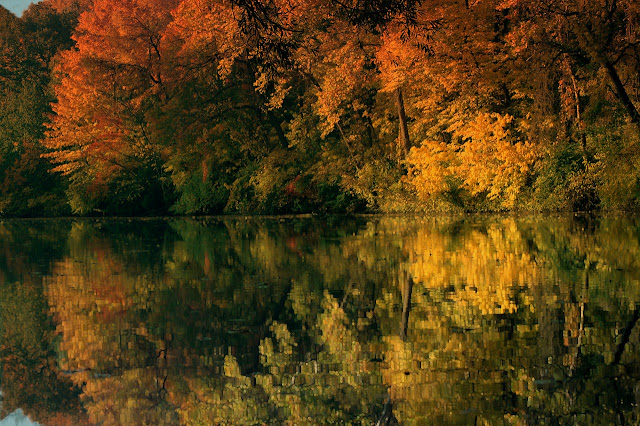 Fall Reflections, Living From Glory To Glory Blog...