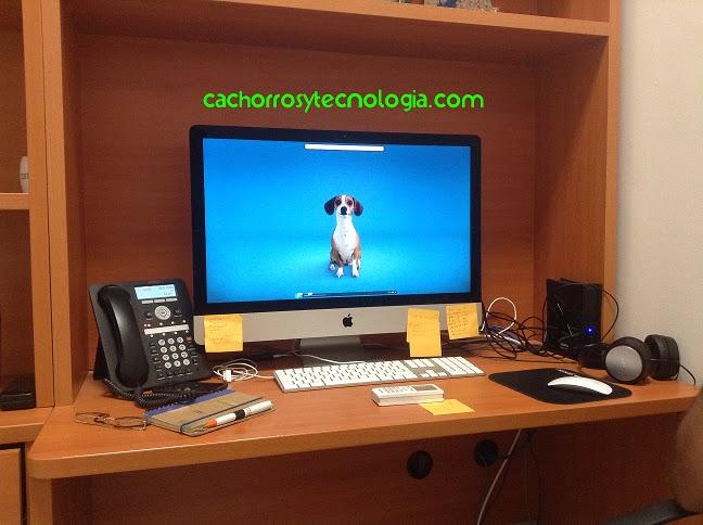 crean-software-que-monitorea-ladrido-de-perros-para-seguridad-shudomestica shurkonrad dog puppy cachorro perro cute love