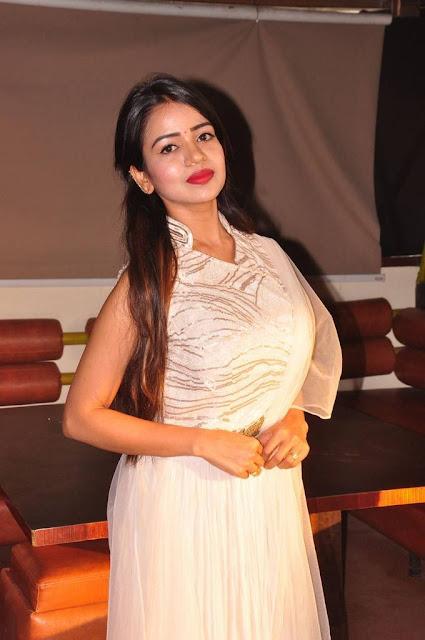 Bhavya Sri Srimathi Telangana 2018 Press Meet Stills