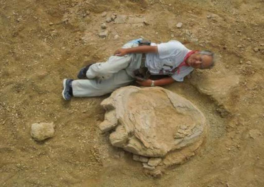 One of the biggest dinosaur footprints ever recorded has been unearthed in the Gobi Dessert.