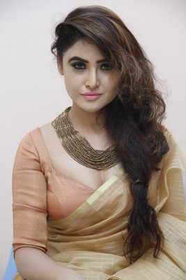Sony Charishta In Golden Saree New Stills