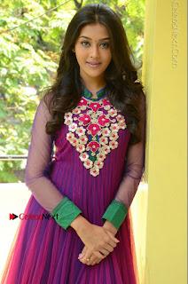 Actress Pooja Jhaveri Latest Stills in Purple Salwar Kameezt at Dwaraka Success Meet  0125.JPG