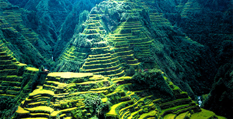 Rice Terrace, Asia Heritage Sites Attractions