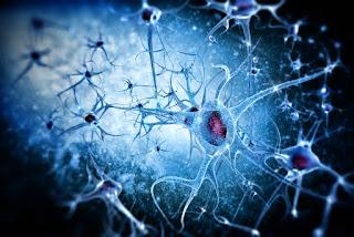 Dementia patients still retain long term memory.