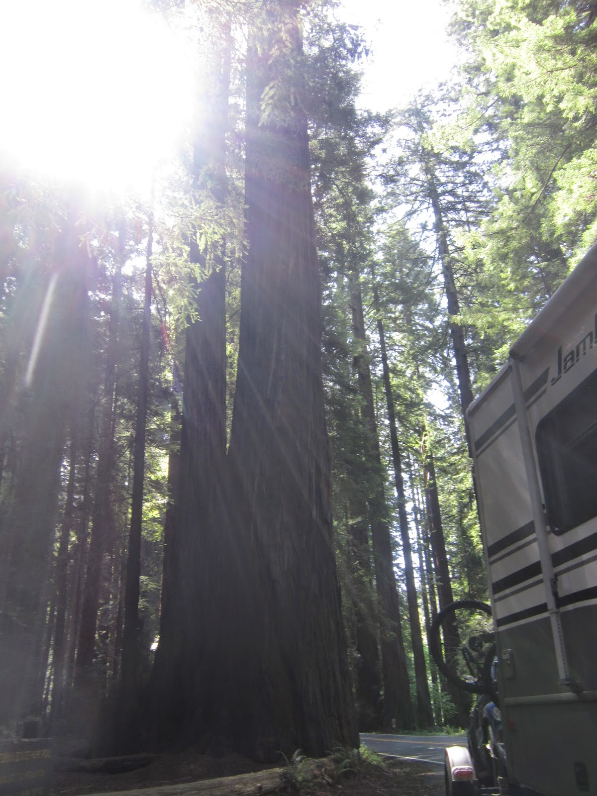 Full Time Rving Travis Afb To Redwood Np