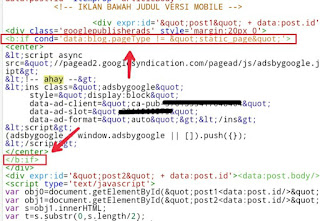 Tips Supaya Iklan Adsense Tidak Muncul di Halaman Privacy Policy, Disclaimer, Contact Us