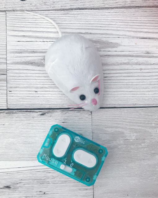 Small toy mouse and remote control