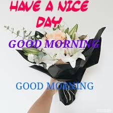 LATEST  GOOD MORNING