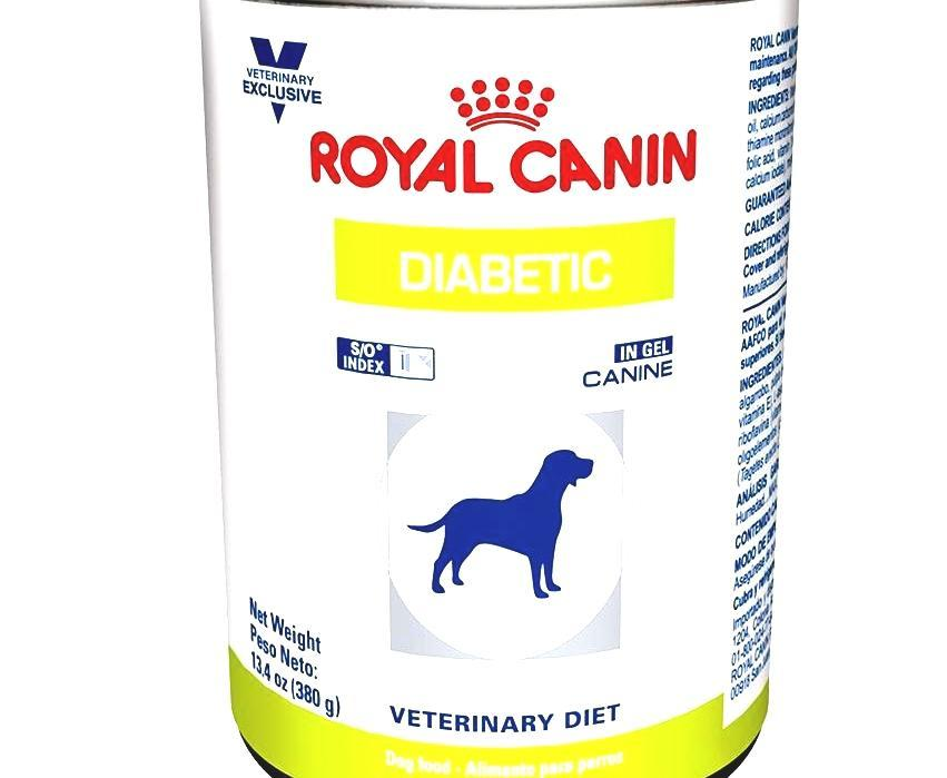 what dog food is best for dogs with diabetes