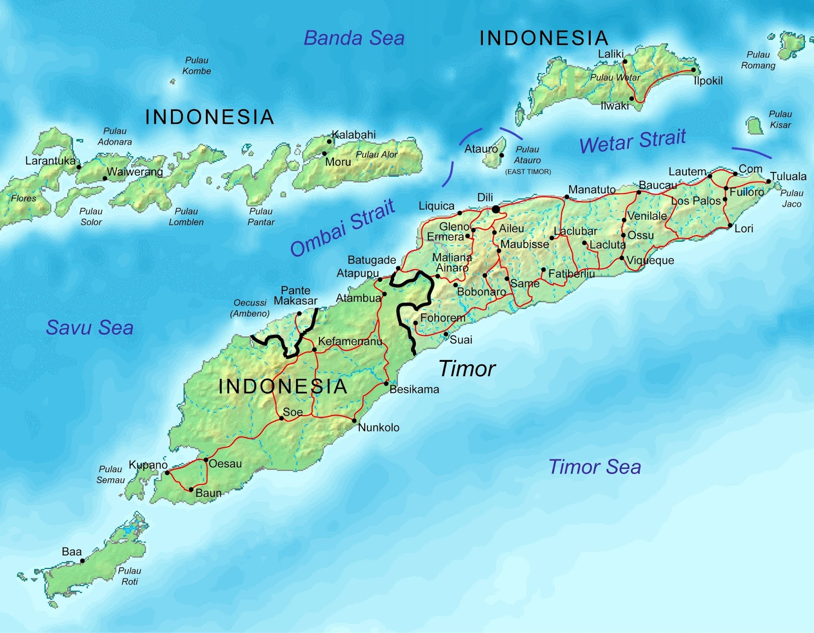 an overview of the colonization of the island of timor by the portuguese In may, following a un withdrawal, east timor's government will have  the  primarily catholic country shares an island with the indonesian province of west  timor  in 1974, the portuguese colony of timor declared itself independent   in september 2003, in apparent contradiction to an earlier review by.