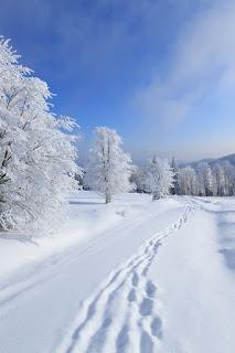 , Народный календарь, приметы и суеверия на февраль, Общие февральские приметы, Народный календарь февраря, фквральские приметы, приметы февраля на каждый день народный календарь в феврале, какие приметы есть в феврале, все про фвраль, зимние приметы, народный календарь, приметы и суеверия, на февраль, февраль, зима, приметы на февраль, народный календарь на февраль, погода в феврале, зима, зимние месяцы, приметы про зиму, народные приметы, февральские приметы, зимние приметы, праздники февраля, 1 февраля, календарь примет, народные поверья, снег в феврале, Масленица, еонец зимы, проводы зимы, про приметы, про поверья, про февраль, про зиму,зима, зимние месяцы, календарь народный, мудрость народная, февраль, приметы на февраль, традиции февраля , календарь примет, календарь февраля, приметы на каждый день, приметы о погоде в феврале, приметы на февраль, февраль 2018 года, приметы и суеверия на февральhttp://prazdnichnymir.ru/ Народный календарь, приметы и суеверия на февральзима, зимние месяцы, календарь народный, мудрость народная, февраль, приметы на февраль, традиции февраля , календарь примет, календарь февраля, приметы на каждый день, приметы о погоде в феврале, приметы на февраль, февраль 2018 года, приметы и суеверия на февральАх, Матушка Зима. Приметы, суеверия, народные мудрости и поговорки про зиму.