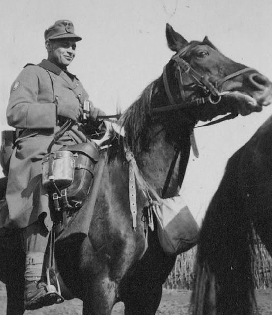 Horses in World War II worldwartwo.filminspector.com German mountain troops