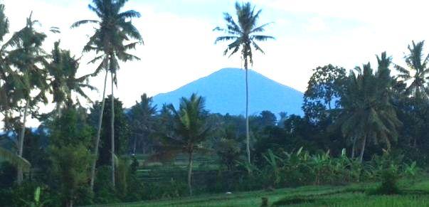 North Bali Countryside - Taman Ayun, Mengwi, Royal Temple, Bedugul, Candi Kuning, Ulundanu Lake Beratan Temple, Banjar, Lovina, Gitgit Waterfall, Buleleng, Singaraja