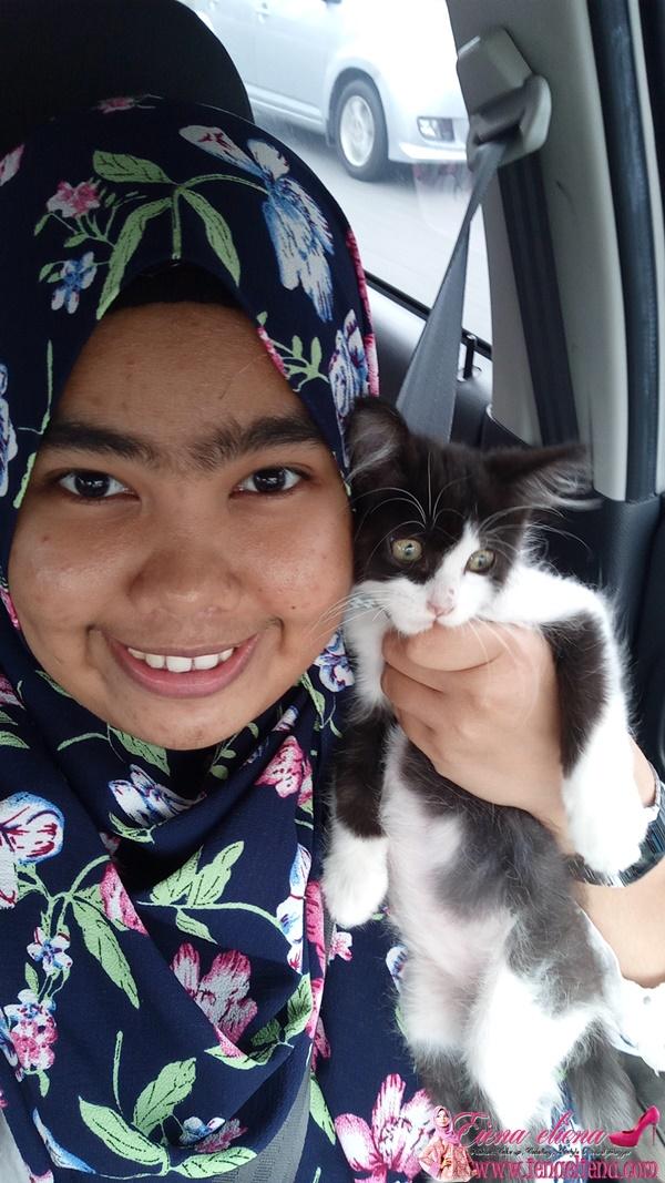 Kempen MyCat2Vet Oleh Royal Canin Malaysia