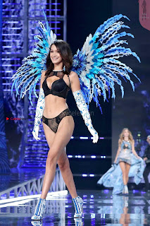 Bella-Hadid-at-2017-Victorias-Secret-Fashion-Show-16+%7E+SexyCelebs.in+Exclusive.jpg