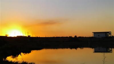 O sol: fonte de energia e de poesia.