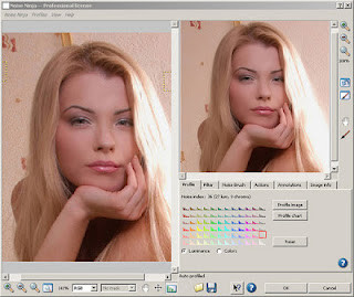 Download Noise Ninja 2 4 1 Plug-In for Photoshop Full Keygen