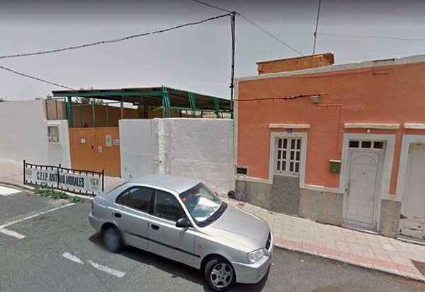 Muere un niño de 4 años al caerle parte de  una palmera en un colegio del Carrizal - Ingenio, Gran Canaria, en un campus de verano
