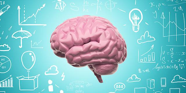 Resultado de imagem para Neuroeducação
