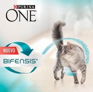 Prueba Purina One Bifensis