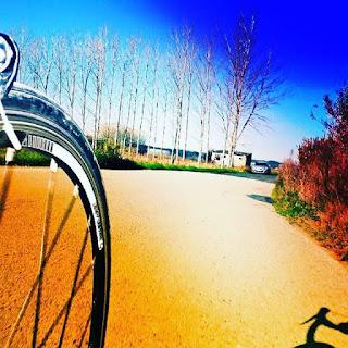 Foto de bicicleta a rolar pelo Campo