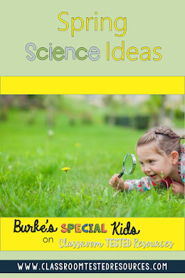 Fun spring science ideas for the classroom.
