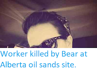 https://sciencythoughts.blogspot.com/2014/05/worker-killed-by-bear-at-alberta-oil.html