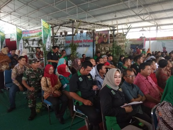 Babinsa Koramil Pandaan Amankan Festival Kopi Kapten Dan Festival Apel Pagi