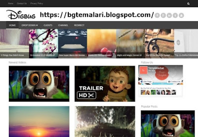 Digbug Video Blogger
