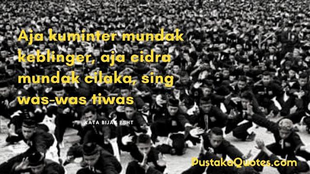 Kata Kata PSHT Bahasa Jawa Keren