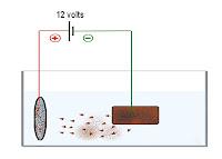 Elektroliz ile bir metalin bakır kaplanmasını gösteren çizim