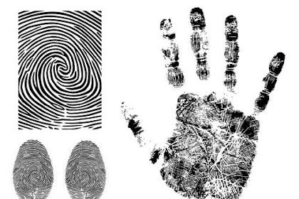 Sistem Biometrika, Sebuah Pengantar Dasar