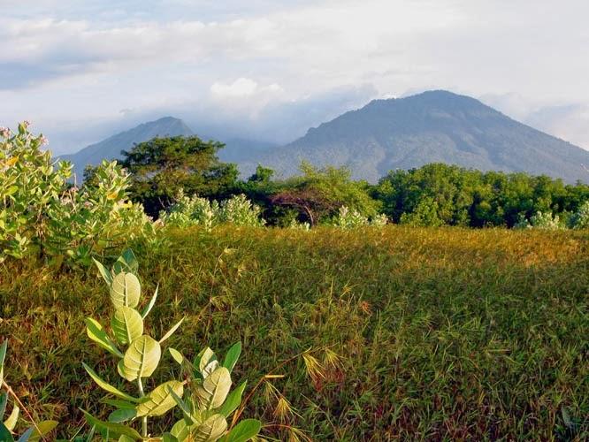 Pengetahuan Lingkungan Stitek 3 Jelaskan Apa Yang Dimaksud Dengan