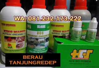Jual SOC HCS, KINGMASTER, BIOPOWER Siap Kirim Berau Tanjungredep