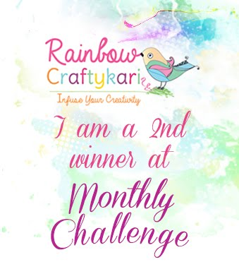 2nd winner Rcs challenge