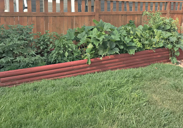 How to landscape your yard, how to keep your yard pretty, how to beautify your yard, tips to manage your yard, denver lawn service companies, lawn service companies in denver, colorado lawn service companies, lawn service companies in colorado
