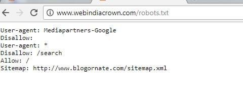 Robots.txt File Check
