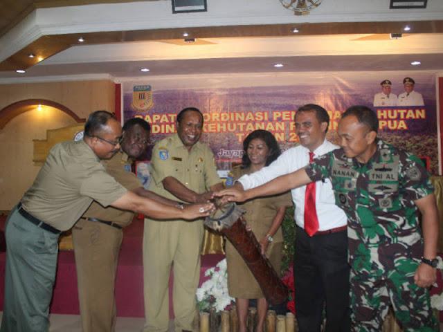 Undang-Undang Pemerintahan Daerah, Lemahkan Pengawasan Hutan di Papua